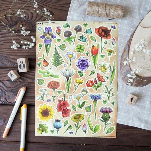 Pack Botany
