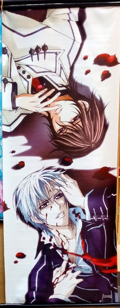 Тканевый плакат Рыцарь-вампир/Vampire knight